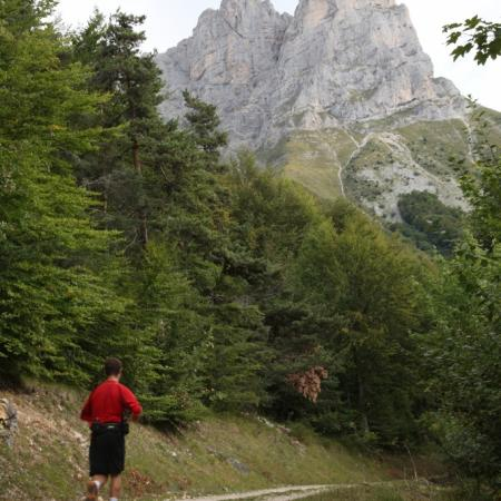 trail201133