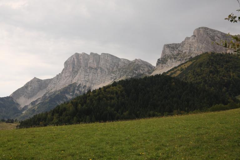 trail201139